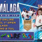 Open Malaga Taekwondo Online