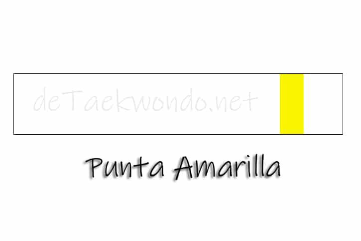Cinturón Punta amarilla