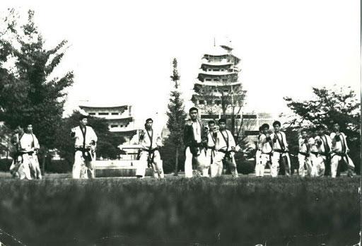 Los guerreros flor -Hwarang
