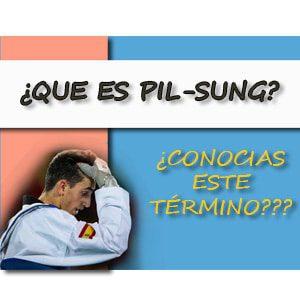 ¿ Qué es Pil-Sung ?